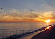 gulf-shores